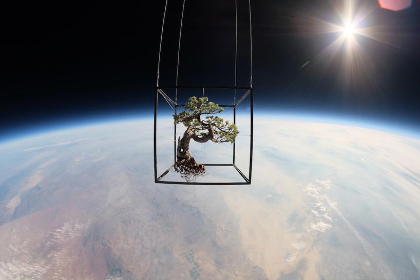 azuma-makoto-sends-flowers-into-space-designboom01