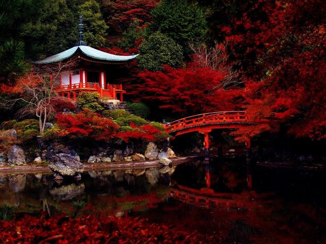 Japanski vrtovi  Bonsai prodaja