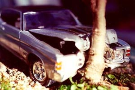 car-crash-bonsai-2