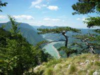 id46-banjska-stena-tara nacionalni park