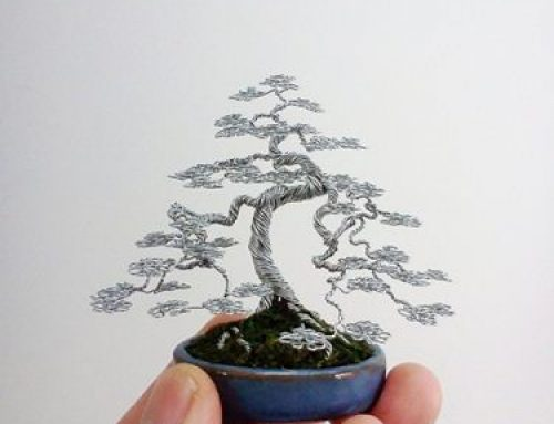 Bonsai od žice