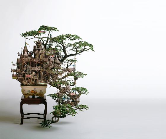 bonsai iz zemlje čuda, takanori aiba
