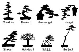 Bonsai stilovi